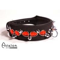 Avalon - DEFIANCE - Collar med spisse nagler og røde stener - Sort - glatt